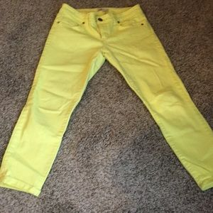 Cabi cropped Bree yellow/lemon pant